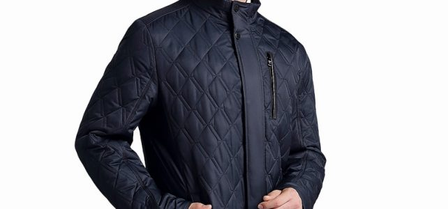 CITY CLASS NEW Mens Autumn Jackets And Coats Business Leisure Slim Fit Stand Collar Cotton Clothing Plus Size Quilted 14019 Review